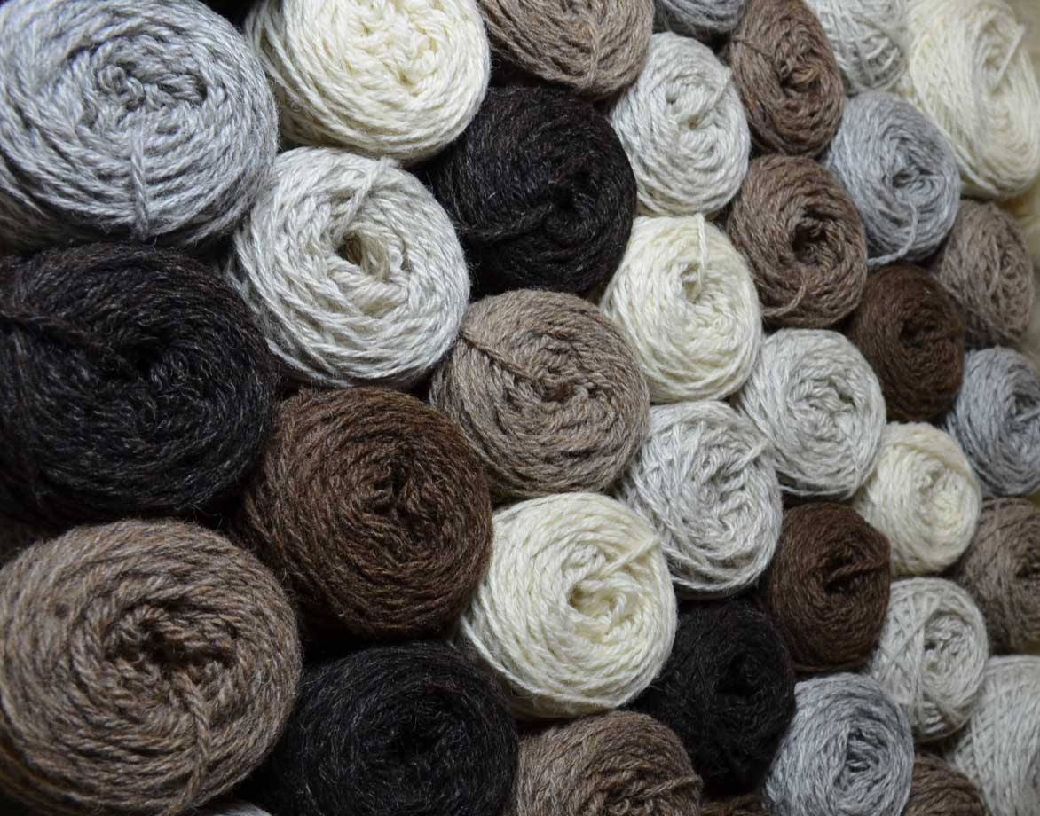 ... coloured yarn shetland wool foula sheep quality knitting yarn